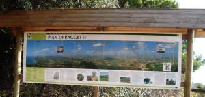 Monte Conero Pian di Raggetti