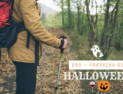 Halloween 2021 – Eno-trekking a caccia di spiriti in mezzo al Conero